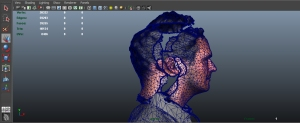 The geometry for Peter's head before merging.